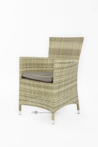 Garden delight dining chair 2